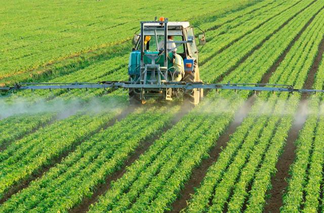 SEED UKRAINE - насіння соняшнику, насіння кукурудзи, ЗЗР, добрива - все для успішного аграрного бізнесу
